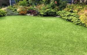 artificial grass by Termi Turf Adelaide